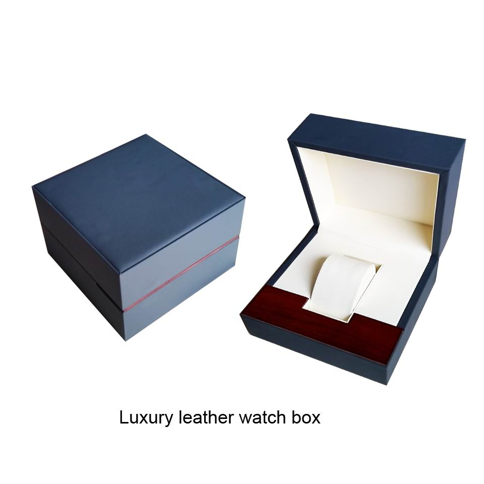 Swiss Brand Leather Watch Box