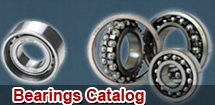 Hot products in Bearings Catalog
